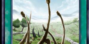 游戏王决斗链接龙之灵庙怎么获得