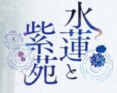 水莲与紫苑中文汉化版